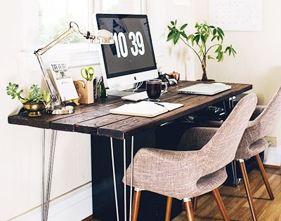 The Best Low Light Plants For Your Desk Office Spaces