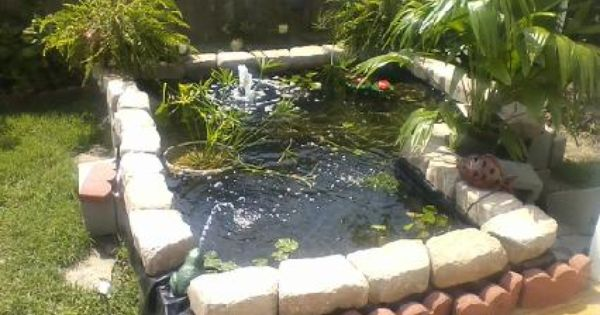 Cheap fish and plant pond from concrete blocks and pond for Cinder block pond ideas