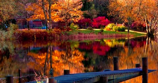 Vibrant autumn lake scene nature lake canoe fall