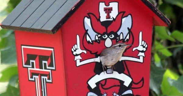 Birdhouse Texas Tech Red Raiders Ttaa A Red Raider