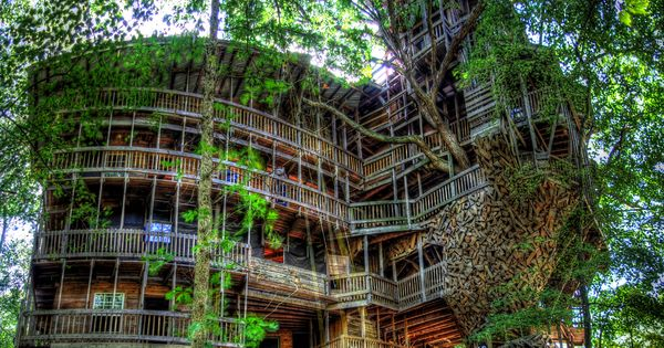 The World's Largest Tree House | Most Beautiful Pages