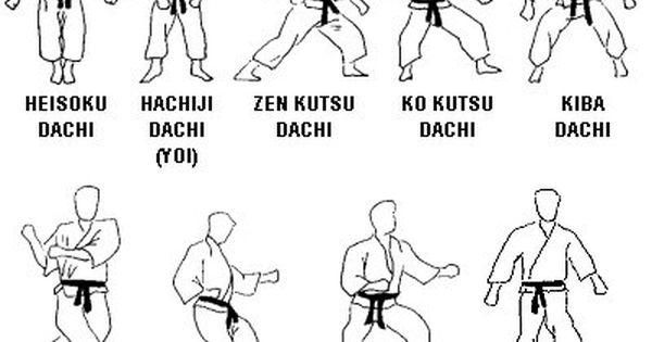 Shisei posiciones cortes a de gimnasio osaka salamanca for Gimnasio 60 entre 8 y 9