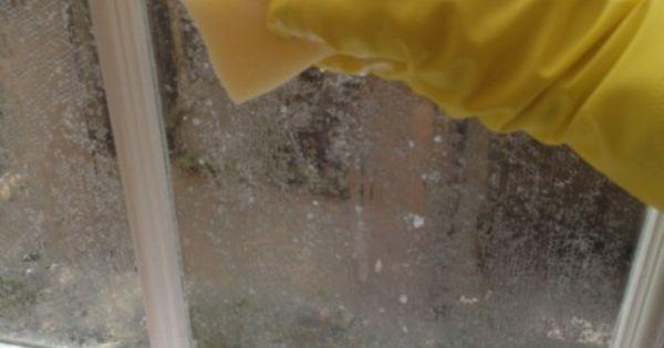 Removing lace window treatment with cornflour cornstarch