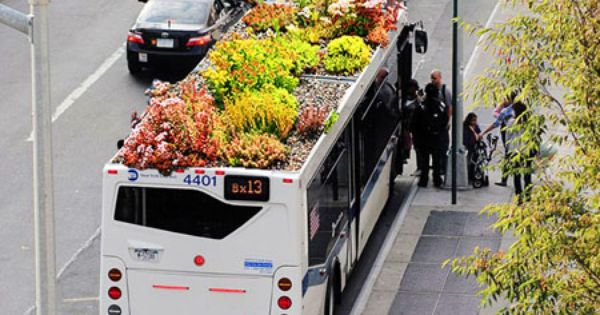 green roof on a bus? such a cool idea! greenroofs amazing ecofriendly