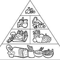 Food Pyramid Coloring Pages Surfnetkids Preschool Food Food