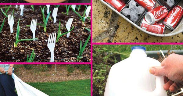 8 Genius Gardening Hacks Gardening Ideas On A Budget summer