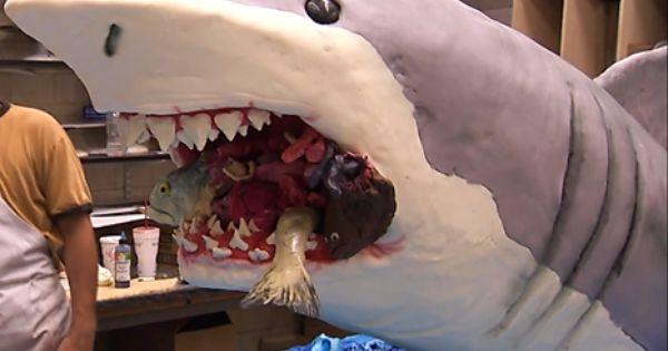Shark Cake Cakeboss S4ep2 Inspiring Cakes Pinterest