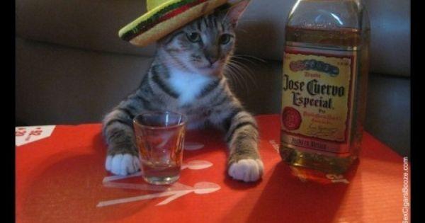 Mi Leo en su Mexican Party