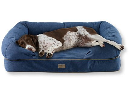 Ll bean 39 s theraputic couch the best dog bed you will - Cubre sofa perros ...