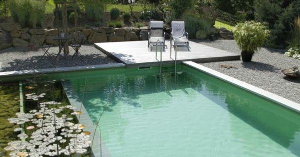 La piscine biologique une solution co friendly pour votre jardin arri re for Piscine biologique