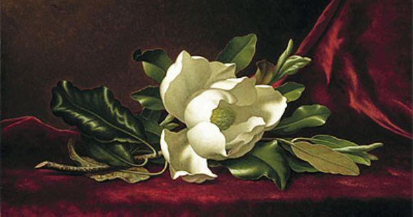 The Magnolia Flower Martin Johnson Heade Painting Reproduction Martin Johnson Heade Art Canvas Art Prints