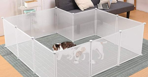 Amazon Com Kitten Play Area Pet Playpens Dog Cages Small Pets