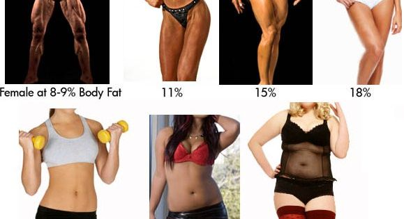 Mai devrait Body fat index for women glad
