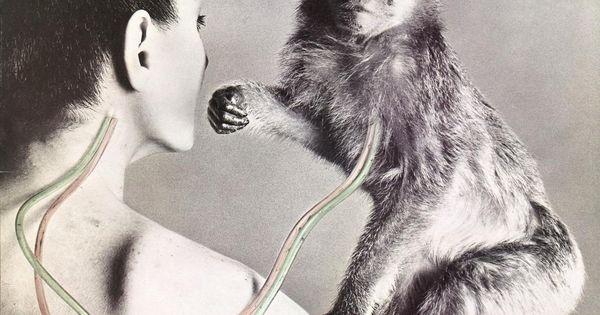 Ufo Quot No Heavy Petting Quot Rock And Roll Album Cover Art A