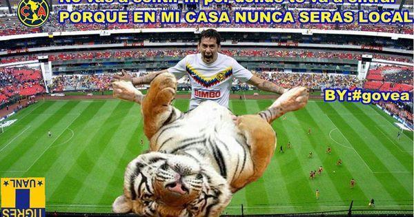 Memes De America Y Tigres