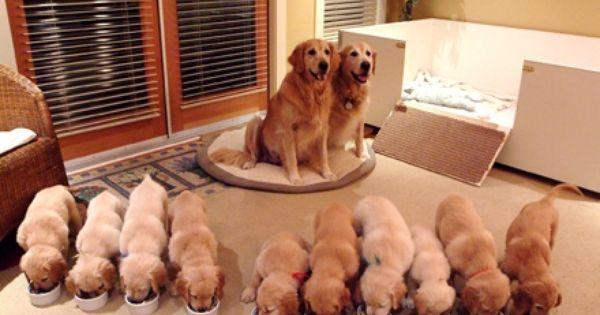 Happy Family::::so cute!!