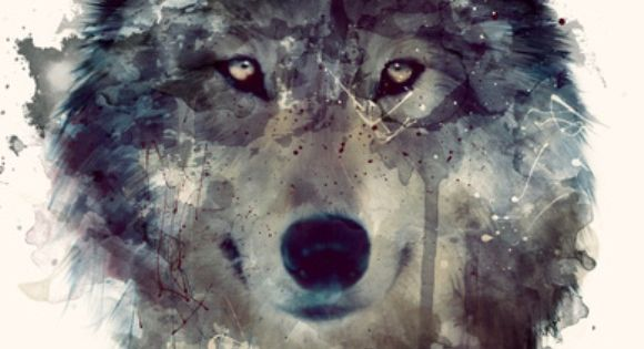 "Persevere art print ""Wolf,"" by Amy Hamilton on Society6 ~ This would"