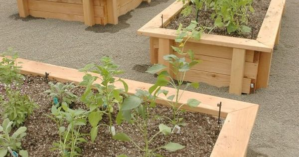 Raised Bed Gardening Just What I Want To Build With A