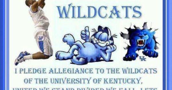 Kentucky Wildcats Wall Quotes Quotesgram: Go Kentucky Wildcats