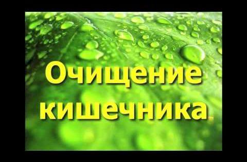 очищение кишечника от каловых камней без клизмы