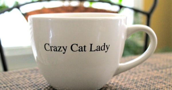"""crazy cat lady"" .... Yep."