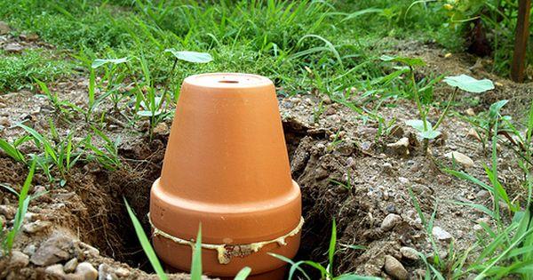 Make Your Own Ollas Potager Permaculture Jardin Permaculture Jardin D Eau