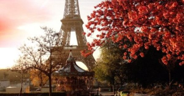 One day I will see this Paris Eiffel tower flower sunset romantic