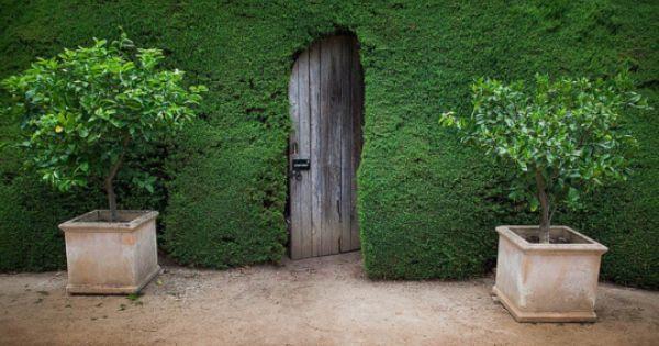 Senza Titolo Giardino Labirinto Giardino Di Lavanda E Giardino