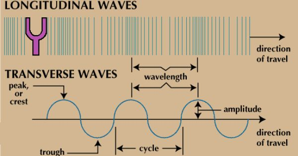 Longitudinal Vs Transverse Waves Physics Experiments Life Hacks For School Physical Science