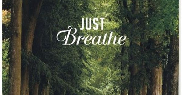 Just breathe quotes outdoors nature trees woods country. Adem