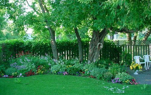 Spring hill nursery flowering plants shrubs shade for Spring hill nursery garden designs