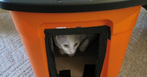 Diy Winter House For Stray Cats Cat House Diy Outdoor Cat House Outdoor Cat Shelter