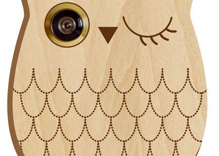 Owl peephole front door decor