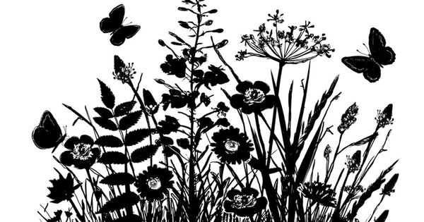 Silhouette Flowers Google Search Silhouettes