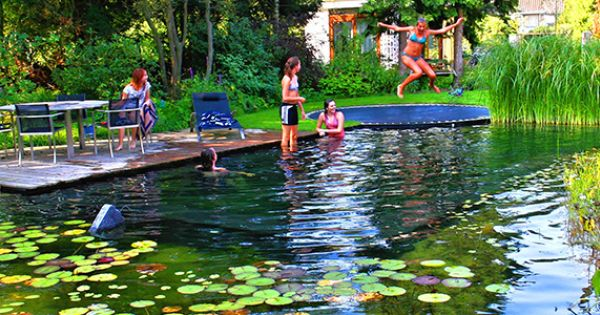 Pool Disguised As A Pond With In Ground Trampoline For A