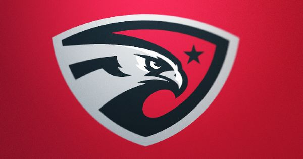 The Hawks by Fraser Davidson Generic logo idea | Sport ...