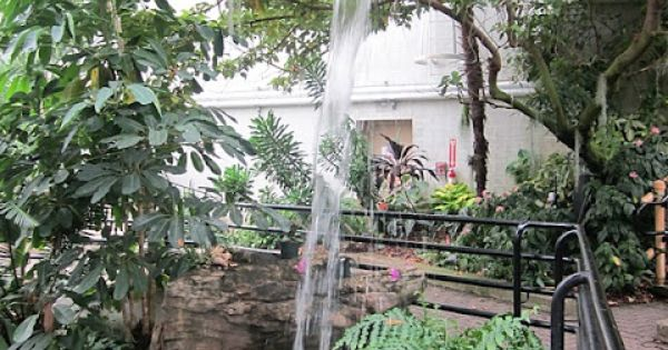 Ft Wayne Foellinger Freimann Botanical Conservatory Places To Visit In Indiana Pinterest