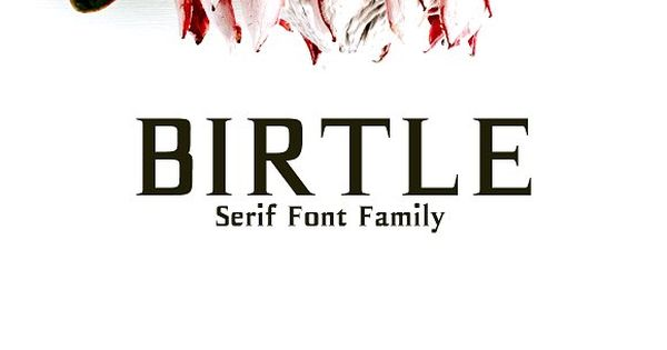 Birtle Serif Font Family – Perfect for gorgeous logos, titles, web layouts and branding