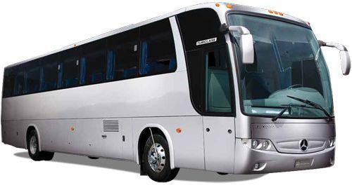 Si Necesitas Alquilar Un Autobus Para Hacer Un Grandioso Paseo Con Tu Familia Y Amigos En Laspalmas No Dudes En Contactarn Camiones De Lujo Autobus Vehiculos