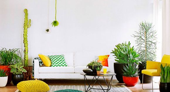 Love the plant theme mixed with textile color pop