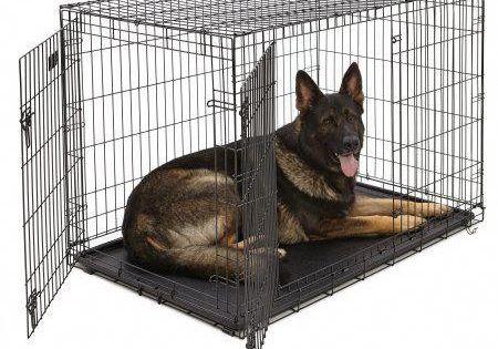 Midwest Single Door Icrate Metal Dog Crate 48 Walmart Com Large Dog Crate Midwest Dog Crates Xxxl Dog Crate