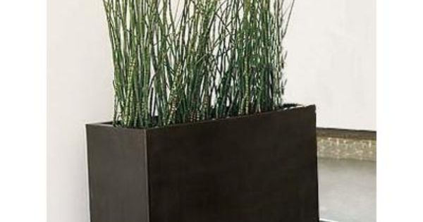 Tall planter w grass instead of privacy screen for Tall planters for privacy