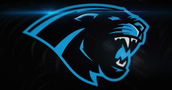 Carolina Panthers Rebrand Concept Logo Design Art Animal Symbolism Rebranding