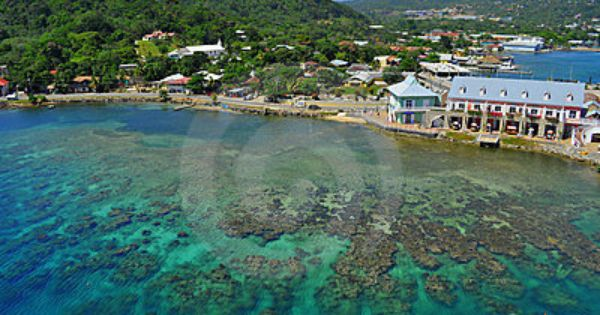 Roatan, Honduras. Great snorkling and lots of fun shops- There is a