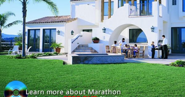 Learn More About Marathon Order Your Free Dvd Now Landscape Design Mexican Lime Tree Mexican Fan Palm