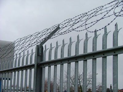 Razor Wire Installation Palisade Fence Wire Fence Concrete Fence