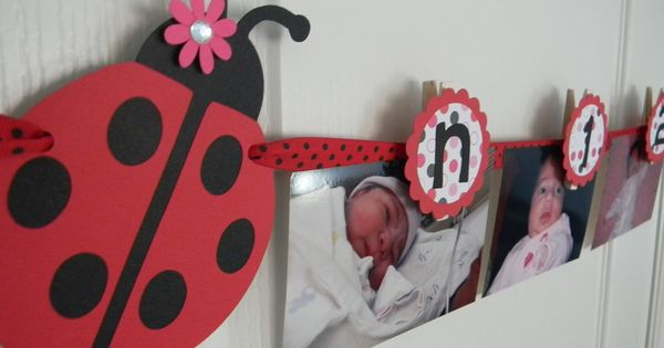ladybug birthday party first year photo clothespin banner in black red and pink   20 00  via
