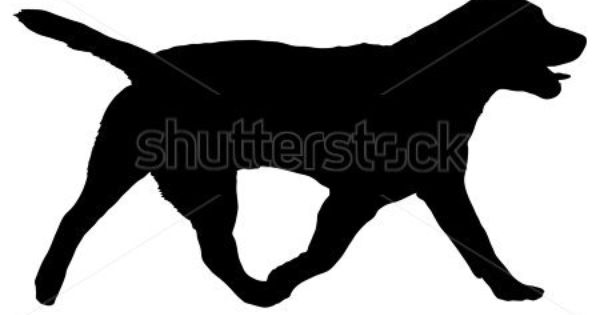 Picture Of Walking Dog Food Clipart Black And White