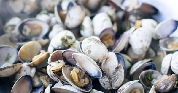 ... | Catch of the day | Pinterest | Wine Recipes, Clams and White Wines