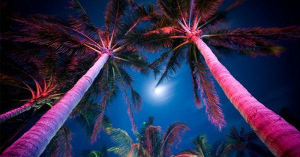 beaf5ea3ec24c46e68ba4be2a9a7355b - Palm Gardens Nursing Home In Port St Lucie